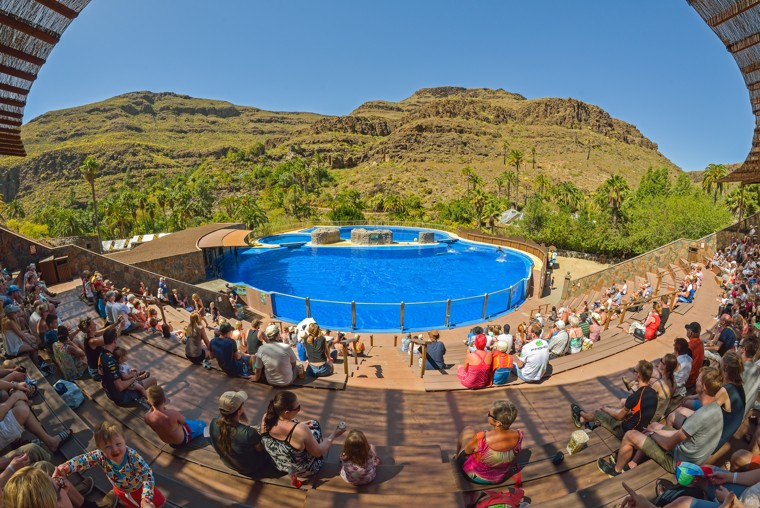 Delfíni show Palmitos Park Maspalomas, Gran Canaria