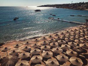 Sharks Bay. Sharm el Sheikh. Egypt